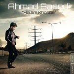 آهنگ احمد سعیدی به نام حالم خوبه