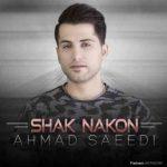 آهنگ جديد احمد سعیدی به نام شک نکن